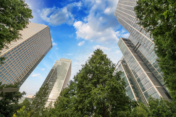 London, Canary Wharf. Beautiful view of Skyscrapers and trees fr