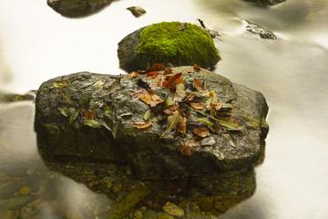 la roccia nel ruscello