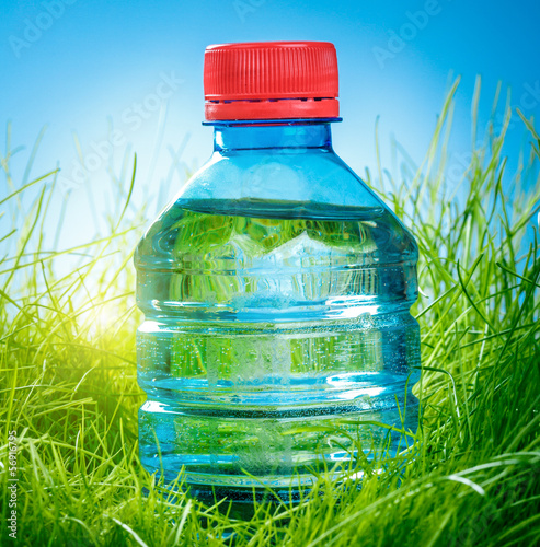 canvas print picture Water bottle on the grass