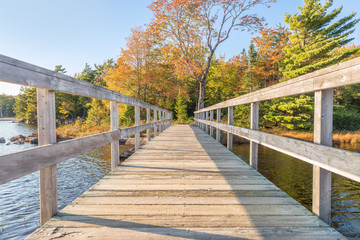 Wooden bridge in autumnal park