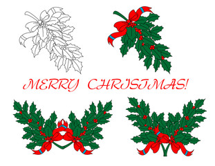 Holly branches for Christmas design