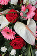 Anthurium, roses and gerberas in a bridal arrangement