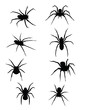 SPIDERS!!!! vector or jpeg - 56929384