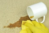 A hand in rubber glove cleaning a coffee stain on a carpet