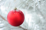 christmas decoration on fir tree branch