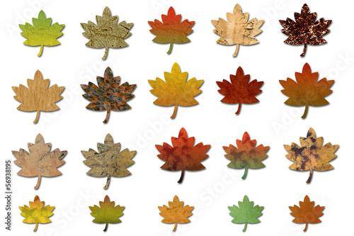 Herbstblätter  blanco