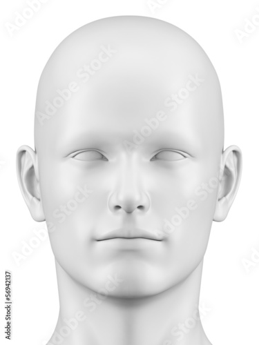 3d rendered illustration of a male head