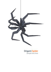 Spider origami