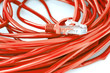 Red UTP network cable LAN on white background