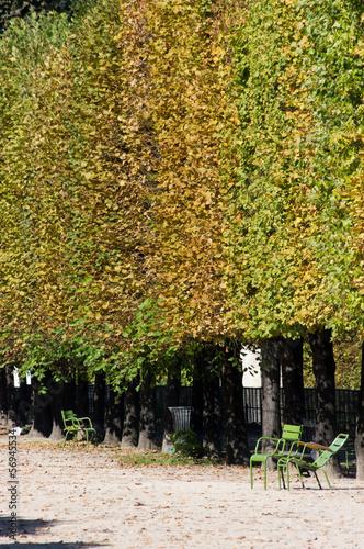 Paris automne