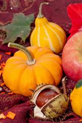 Herbst und Erntedank