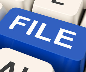File Key Means Filing Or Data Files.