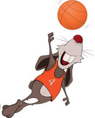 Rabbit the basketball player cartoon