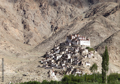 Closeup of Chemrey Monastery, Leh