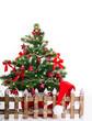 wunderschöner weihnachtsbaum