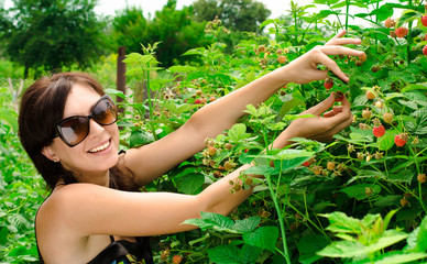 Young woman gathers berries
