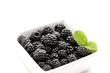 Container with Fresh Ripe Blackberries