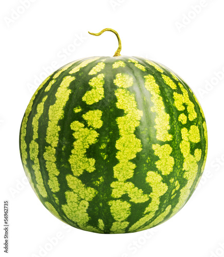 Fresh ripe watermelon