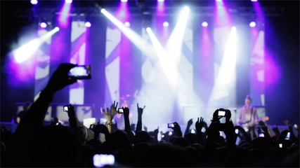 Crowd making party at a rock concert.