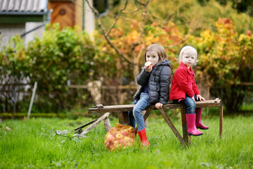 Two sisters sitting on a wooden bench on autumn