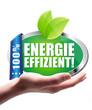 Energieeffizient! Button, Icon