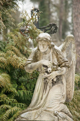 Weeping angel tombstone in famous Lychakiv Cemetery, Lviv