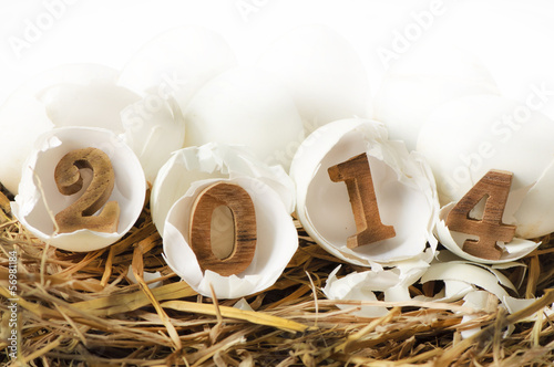 Happy New Year 2014, eggs concept