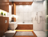 Modern bathroom in modern home