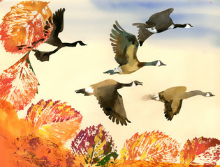 Birds flying to south. Autumn. Hand drawn painting