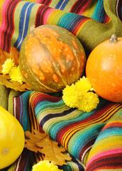 Motley pumpkins