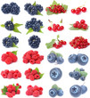 Berries collection