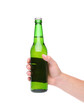 Hand holding up a green beer bottle