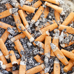 many cigarette butts close up