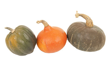 Three colorful autumn squash isolated white background