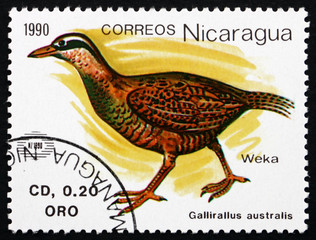 Postage stamp Nicaragua 1990 Weka, Flightless Bird