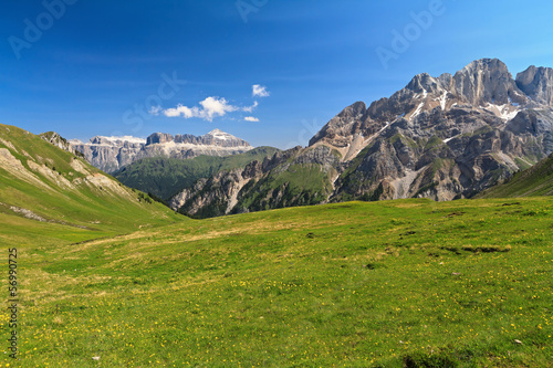 Dolomiti - pasture in Contrin valley