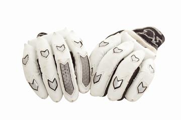Protective Cricket Gloves for Batsmen