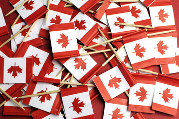 Canada red and white Maple Leaf toothpick flags background