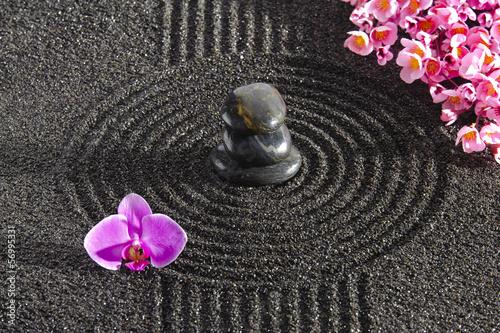 Fototapeten,zen,garten,sand,steine