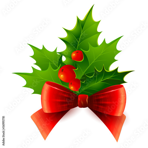 Christmas holly. Vector illustration.