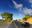 Mountain asphalt road.