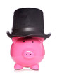 Posh piggy bank