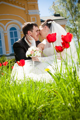 Newly married couple kissing on lawn with tulips