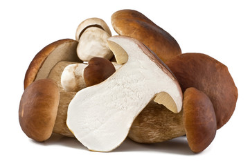 sliced boletus