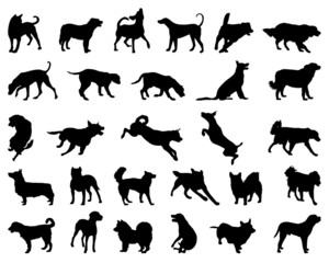Black silhouettes of dog breeds, vector illustration