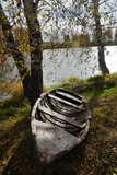 Autumn riverbank with birches and old boat