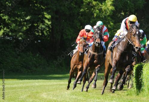 Deurstickers Paarden Galopprennen