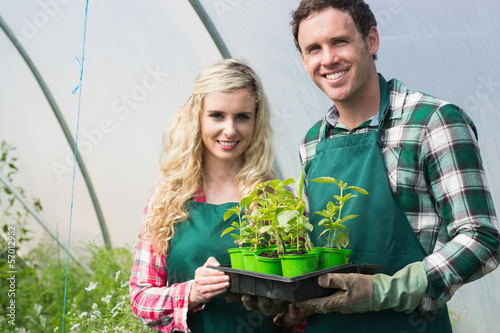 Young couple showing carton of small plants