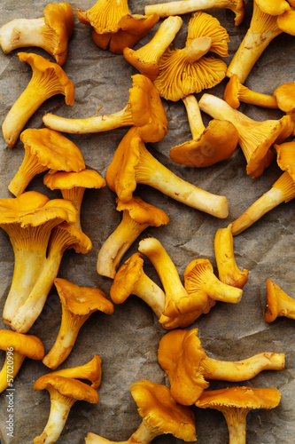 Fresh chanterelle mushrooms on a table