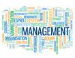 """Nuage de Tags """"MANAGEMENT"""" (gestion équipe ressources humaines)"""